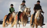 Winter horse-riding  — so much fun
